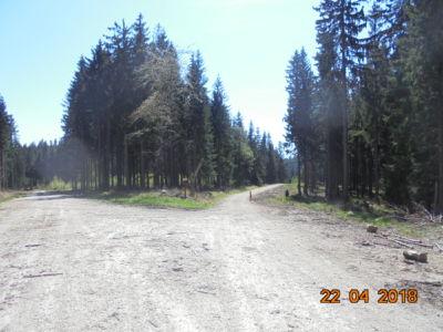 niebieski szlak rowerowy - w dół na Wrzosówkę