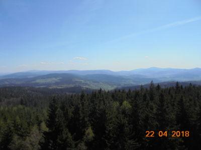 widok z wieży na Borowkowej