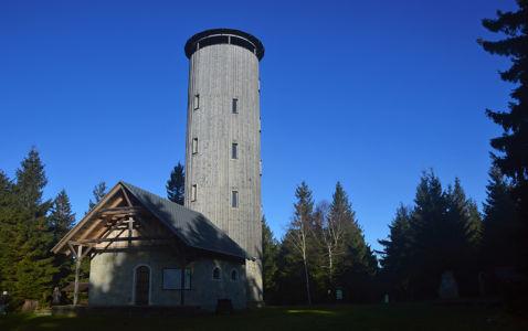 Borówkowa wieża